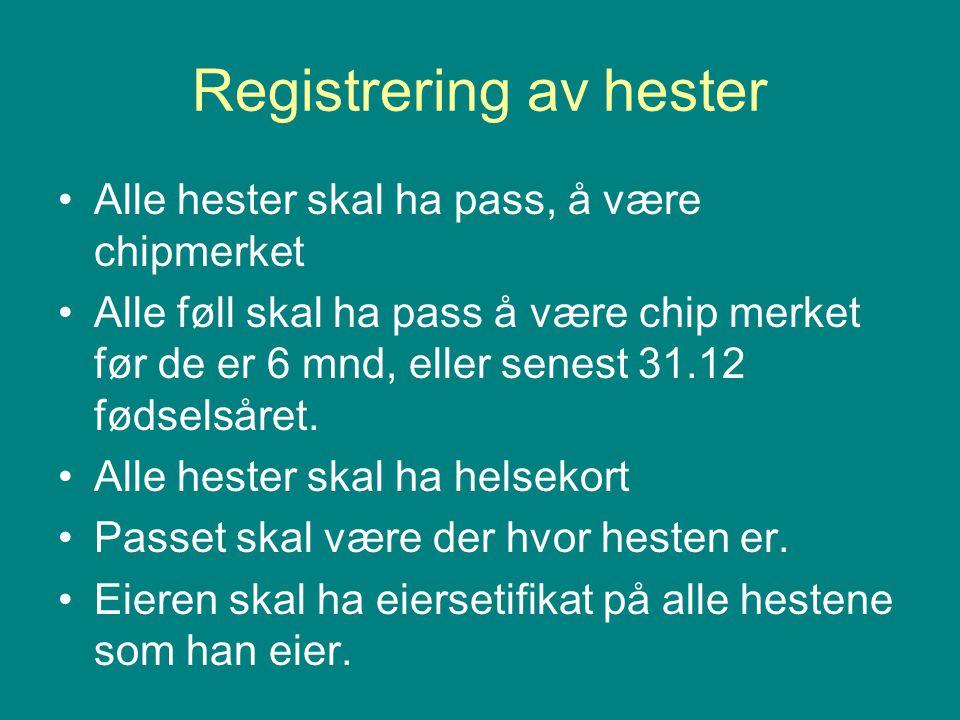 Registrering av hester •Alle hester skal ha pass, å være chipmerket •Alle føll skal ha pass å være chip merket før de er 6 mnd, eller senest 31.12 fød