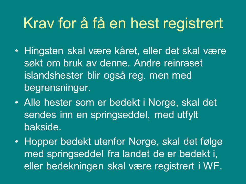 Krav for å få en hest registrert •Hingsten skal være kåret, eller det skal være søkt om bruk av denne. Andre reinraset islandshester blir også reg. me