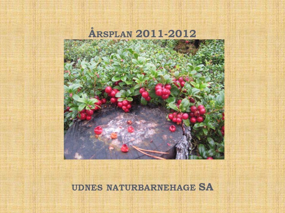 Å RSPLAN 2011-2012 UDNES NATURBARNEHAGE SA