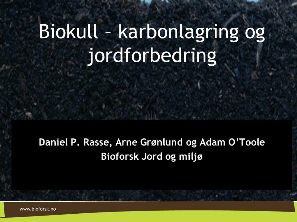 Daniel P. Rasse, Arne Grønlund og Adam O'Toole Bioforsk Jord og miljø Biokull – karbonlagring og jordforbedring