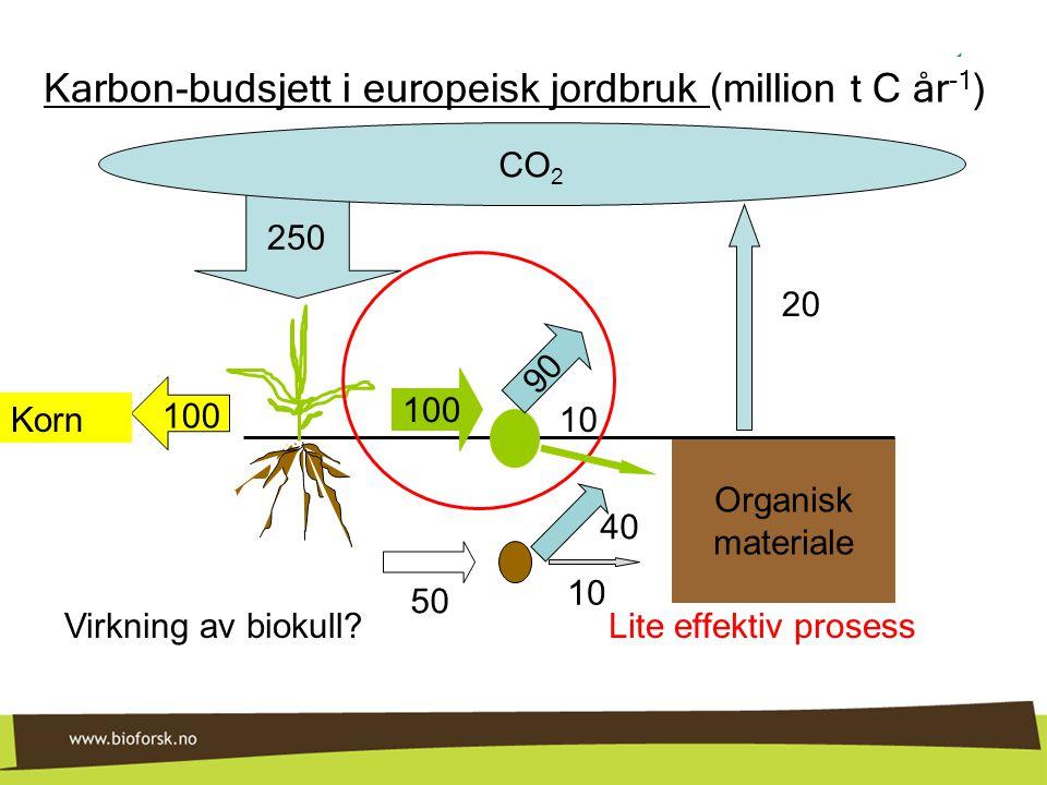 250 Organisk materiale CO 2 100 Korn 100 40 10 50 Karbon-budsjett i europeisk jordbruk (million t C år -1 ) 20 Lite effektiv prosess 90 10 Virkning av