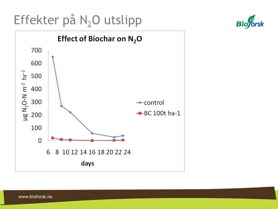 Effekter på N 2 O utslipp