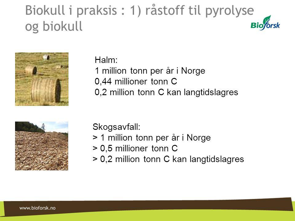 Biokull i praksis : 1) råstoff til pyrolyse og biokull Halm: 1 million tonn per år i Norge 0,44 millioner tonn C 0,2 million tonn C kan langtidslagres