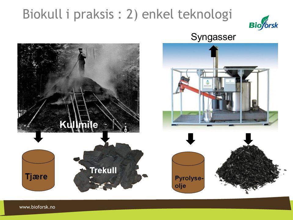 Biokull i praksis : 2) enkel teknologi Kullmile Trekull Tjære Pyrolyse- olje Syngasser