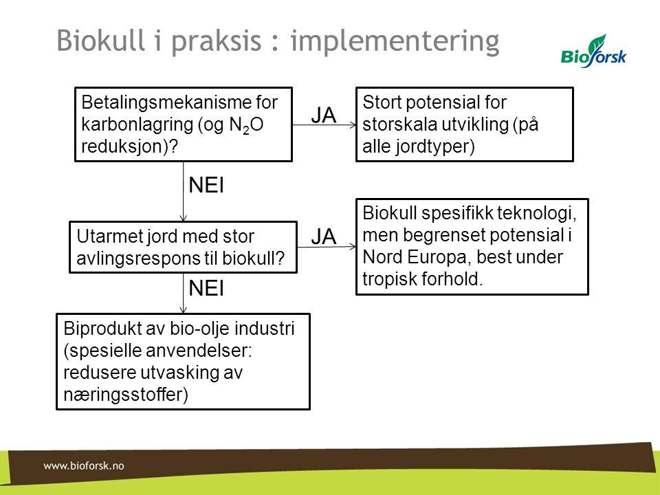 Biokull i praksis : implementering Betalingsmekanisme for karbonlagring (og N 2 O reduksjon)? Stort potensial for storskala utvikling (på alle jordtyp
