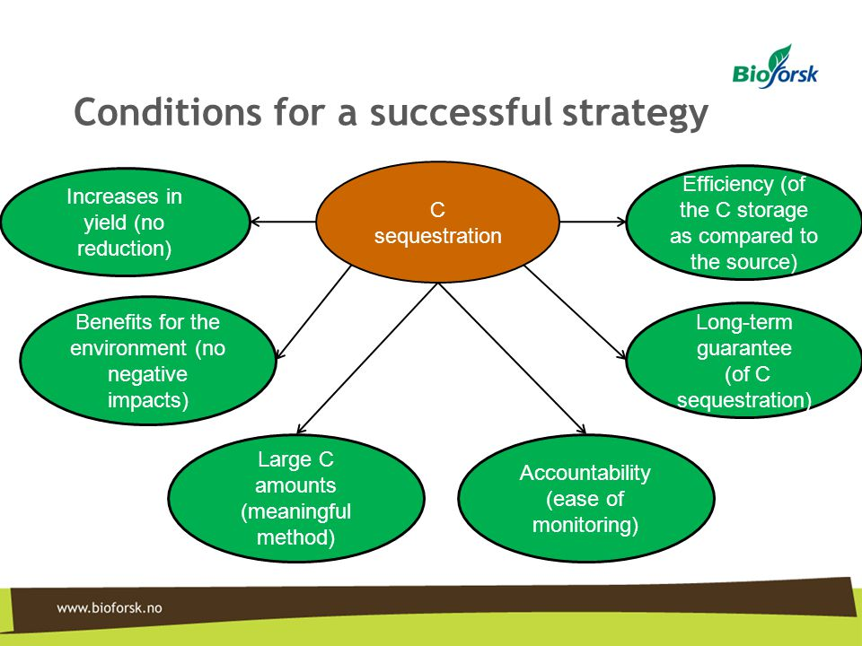 Conditions for a successful strategy C sequestration Increases in yield (no reduction) Benefits for the environment (no negative impacts) Large C amou