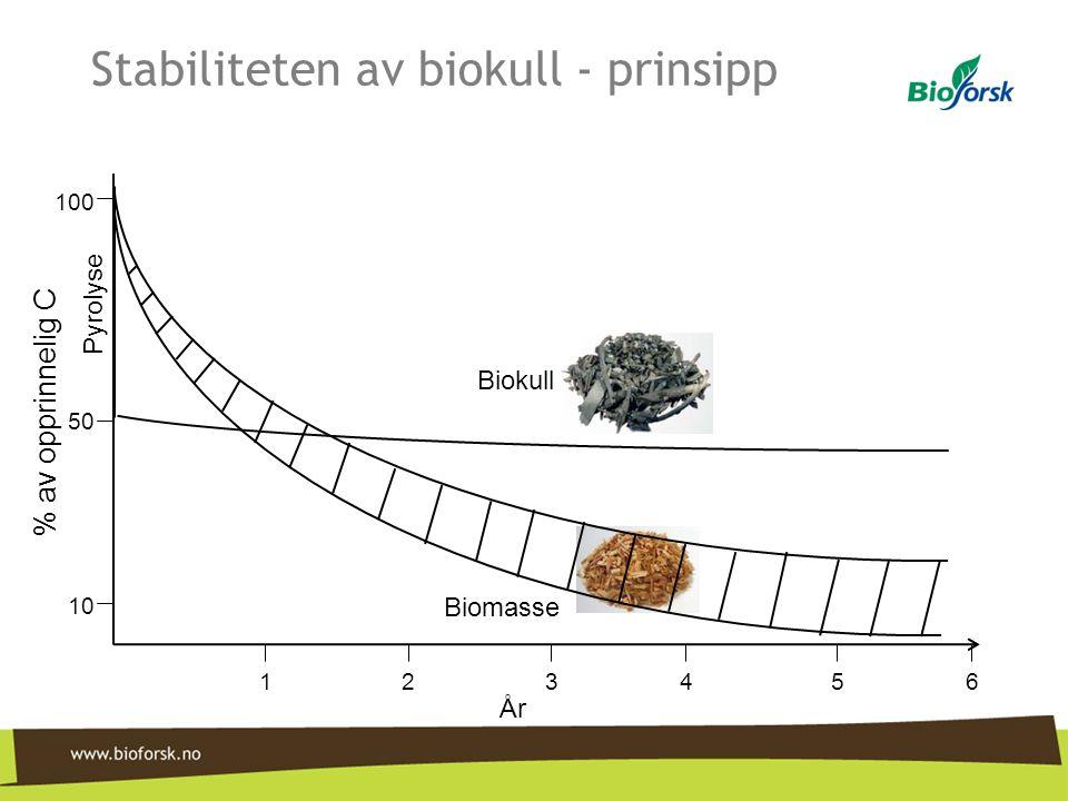 Stabiliteten av biokull - prinsipp 100 50 10 År 124563 Biomasse Biokull Pyrolyse % av opprinnelig C