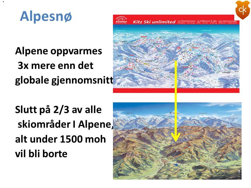 Alpene oppvarmes 3x mere enn det globale gjennomsnitt Slutt på 2/3 av alle skiområder I Alpene, alt under 1500 moh vil bli borte Alpesnø..