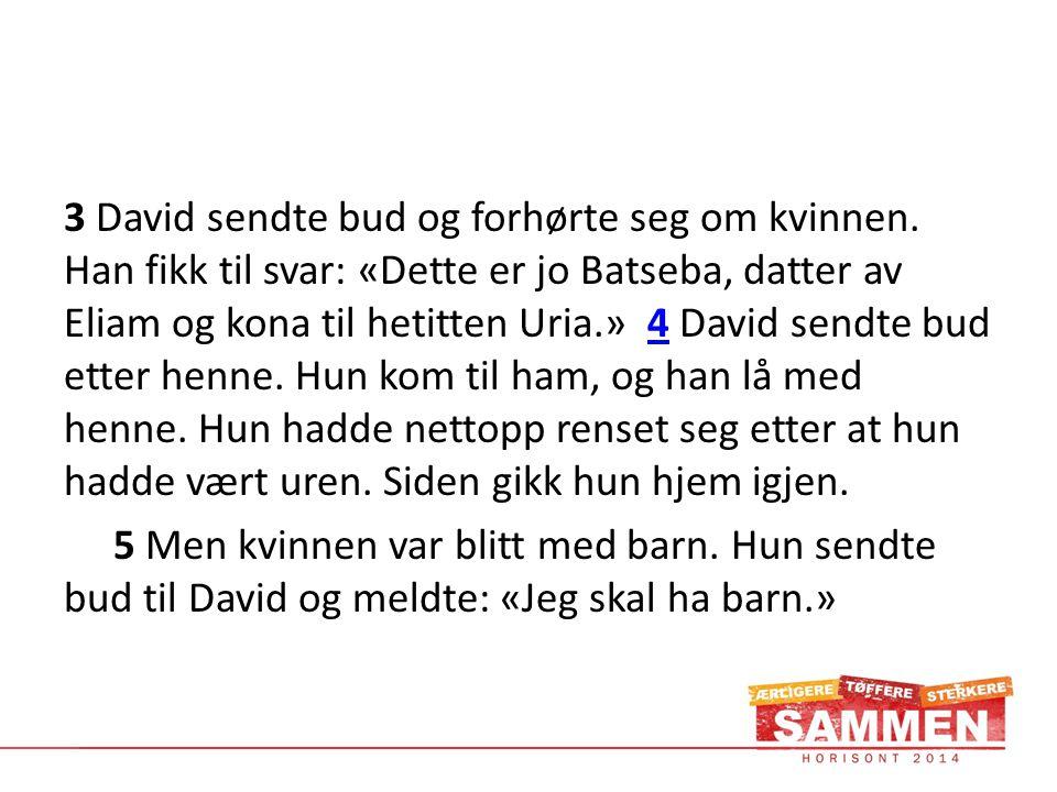 3 David sendte bud og forhørte seg om kvinnen.