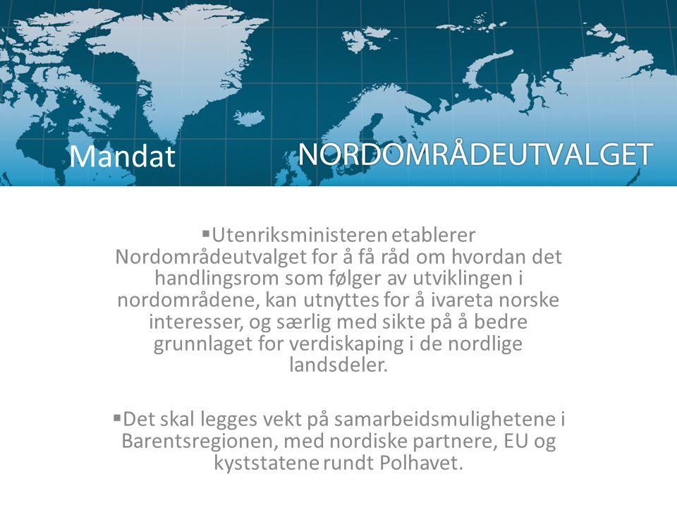  Utenriksministeren etablerer Nordområdeutvalget for å få råd om hvordan det handlingsrom som følger av utviklingen i nordområdene, kan utnyttes for å ivareta norske interesser, og særlig med sikte på å bedre grunnlaget for verdiskaping i de nordlige landsdeler.