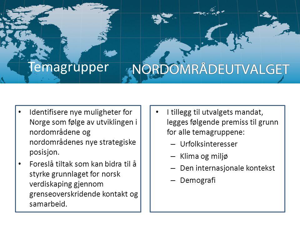• Identifisere nye muligheter for Norge som følge av utviklingen i nordområdene og nordområdenes nye strategiske posisjon. • Foreslå tiltak som kan bi