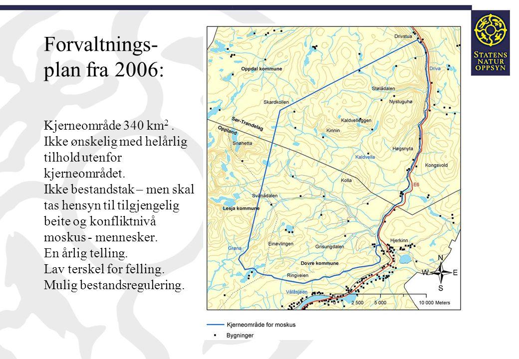 Forvaltnings- plan fra 2006: Kjerneområde 340 km 2. Ikke ønskelig med helårlig tilhold utenfor kjerneområdet. Ikke bestandstak – men skal tas hensyn t