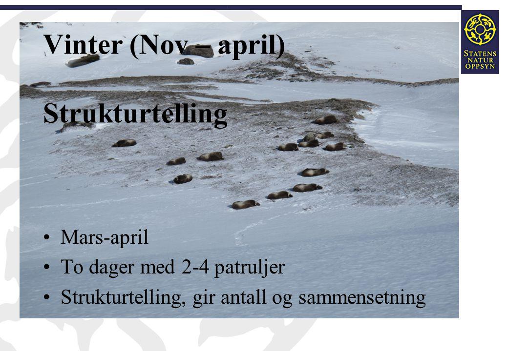 Vinter (Nov – april) Strukturtelling •Mars-april •To dager med 2-4 patruljer •Strukturtelling, gir antall og sammensetning