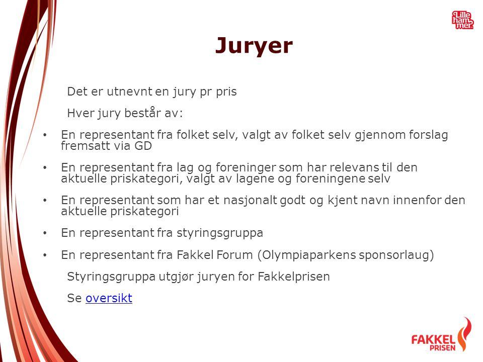 Juryer Det er utnevnt en jury pr pris Hver jury består av: • En representant fra folket selv, valgt av folket selv gjennom forslag fremsatt via GD • E