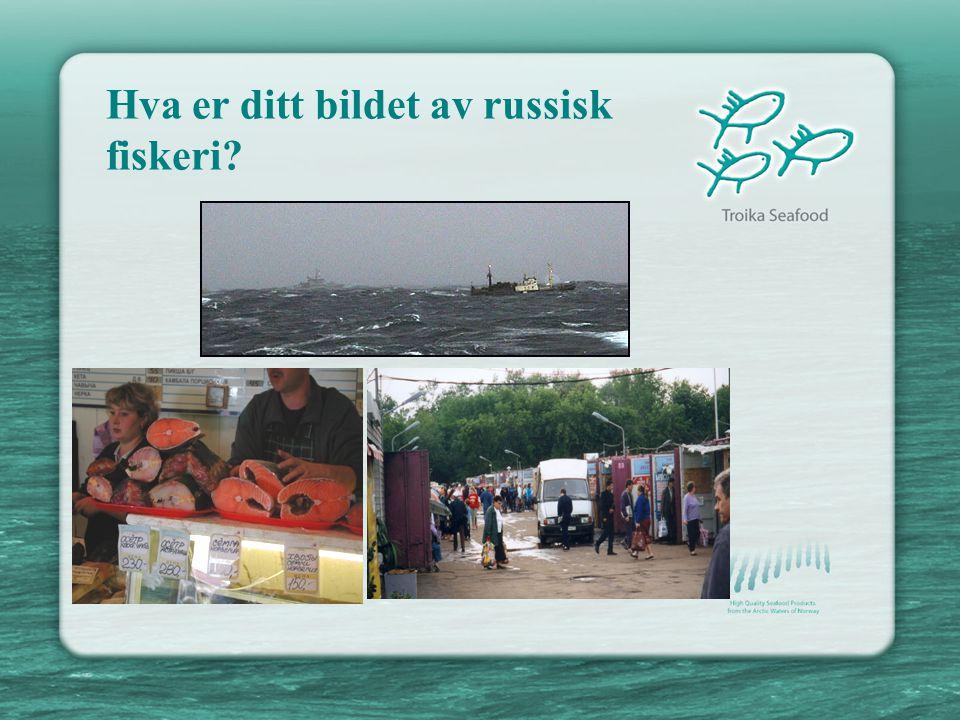 Hva er ditt bildet av russisk fiskeri