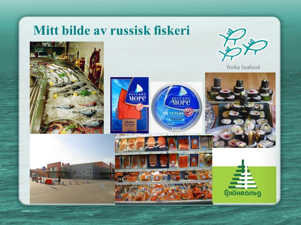 Det russiske marked for fisk