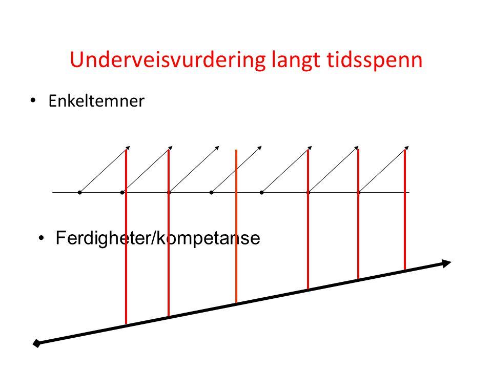 Underveisvurdering langt tidsspenn • Enkeltemner • Ferdigheter/kompetanse