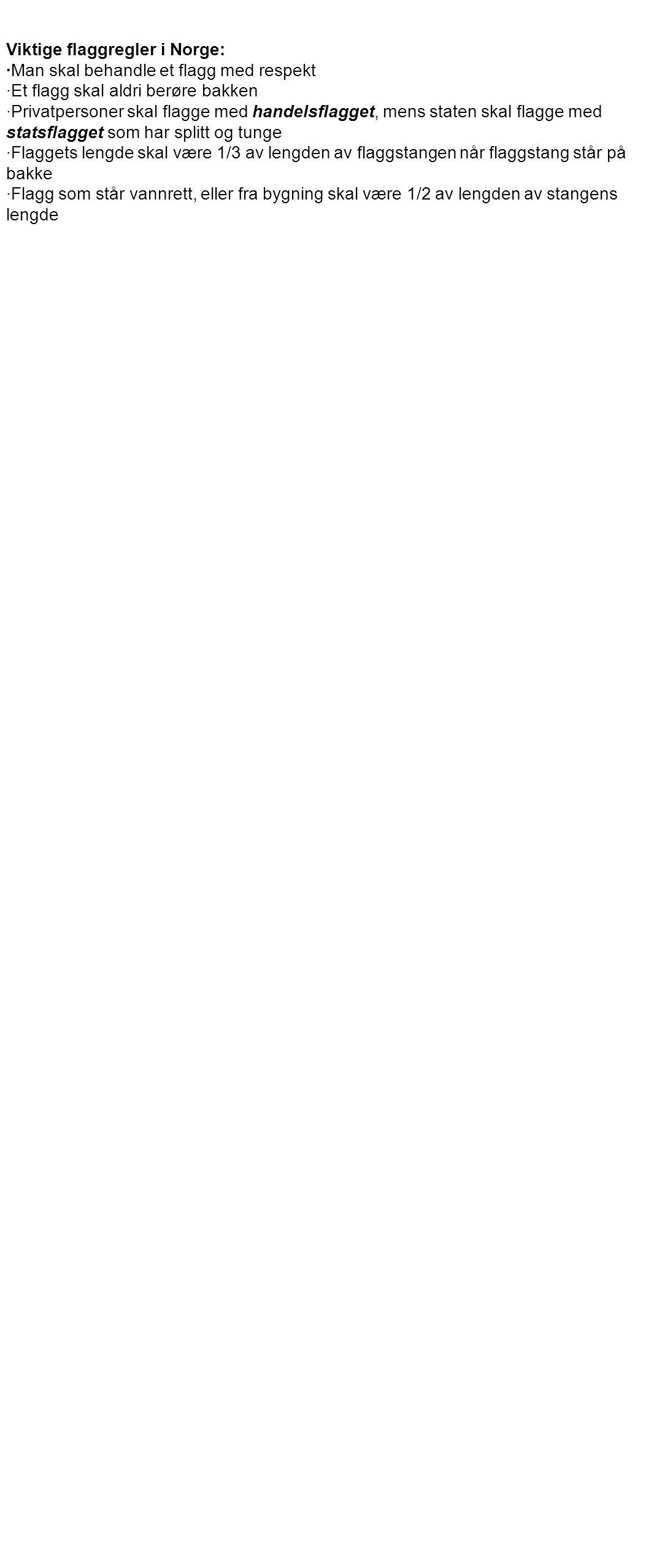 ·Ved flaggheising skal man ikke heise to flagg på samme flaggstang ·Dersom et flagg brukes til dekorasjon, skal det henge fritt, og ikke spikres eller kunne tråkkes på ·Et ødelagt eller slitt flagg skal enten brennes eller sprettes opp slik at fargene skilles fra hverandre ·Flaggets proporsjoner: Lengde: 6-1-2-1-12 med henholdsvis rød, hvit, blå, hvit og rød farge.