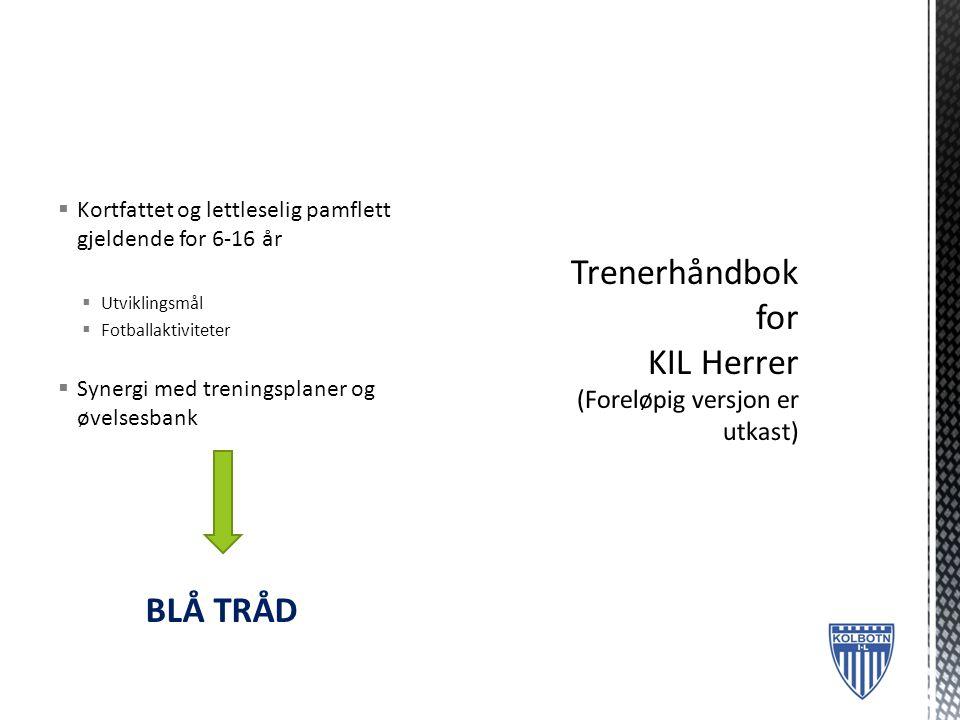  Kortfattet og lettleselig pamflett gjeldende for 6-16 år  Utviklingsmål  Fotballaktiviteter  Synergi med treningsplaner og øvelsesbank BLÅ TRÅD