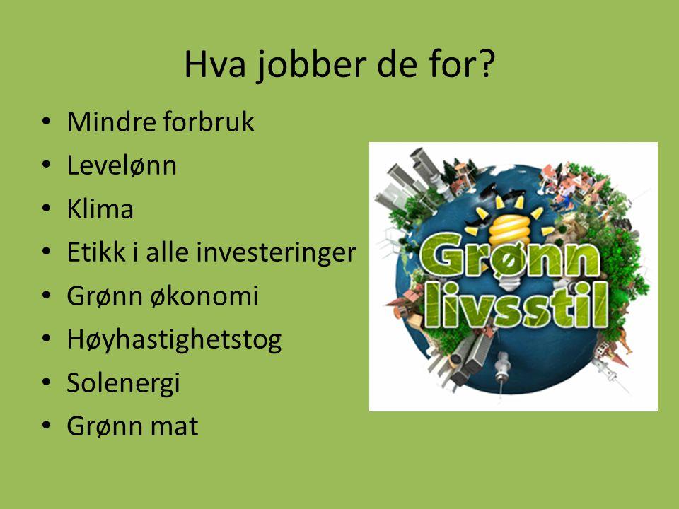 Hva jobber de for? • Mindre forbruk • Levelønn • Klima • Etikk i alle investeringer • Grønn økonomi • Høyhastighetstog • Solenergi • Grønn mat