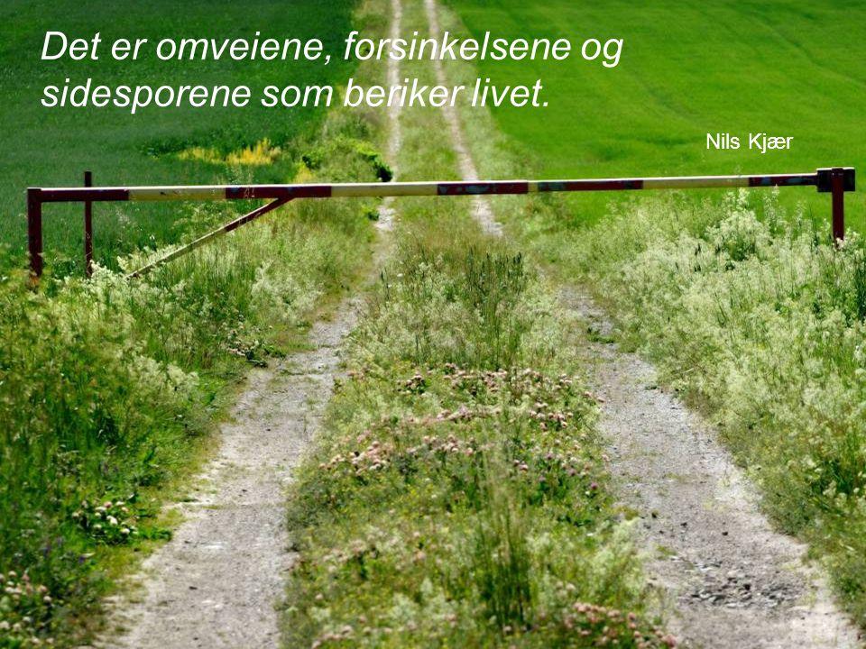 17 Det er omveiene, forsinkelsene og sidesporene som beriker livet. Nils Kjær