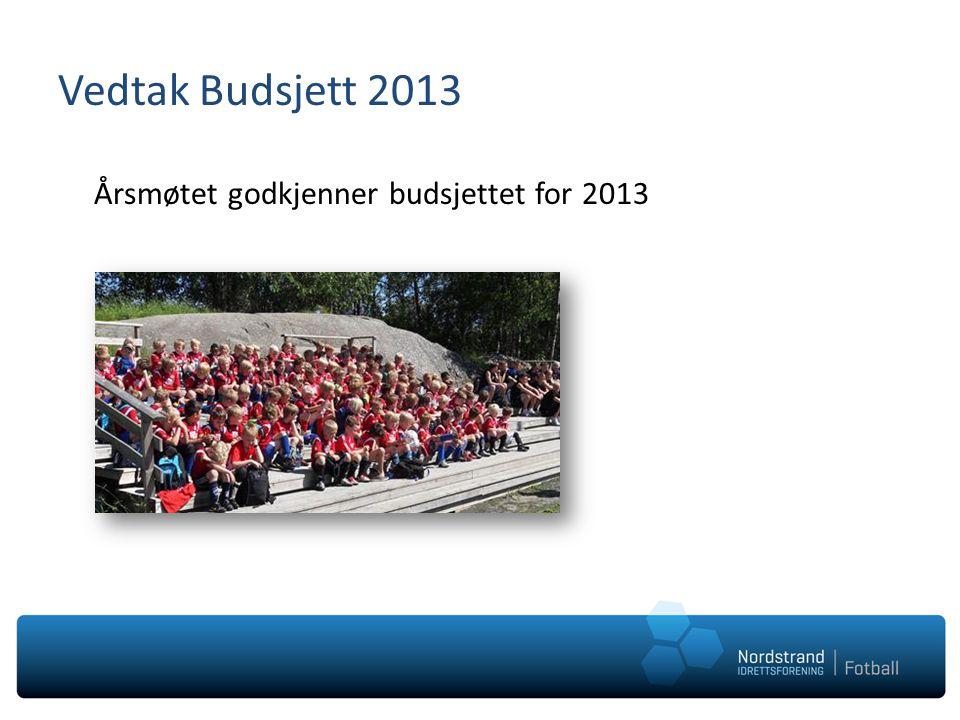 Vedtak Budsjett 2013 Årsmøtet godkjenner budsjettet for 2013
