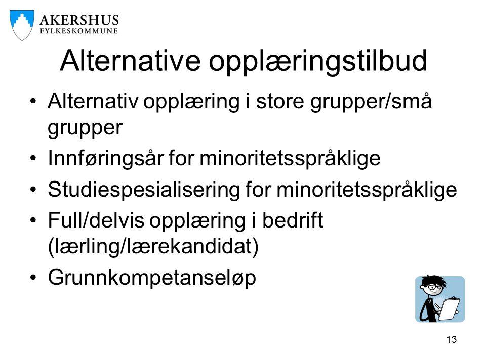 13 Alternative opplæringstilbud •Alternativ opplæring i store grupper/små grupper •Innføringsår for minoritetsspråklige •Studiespesialisering for mino
