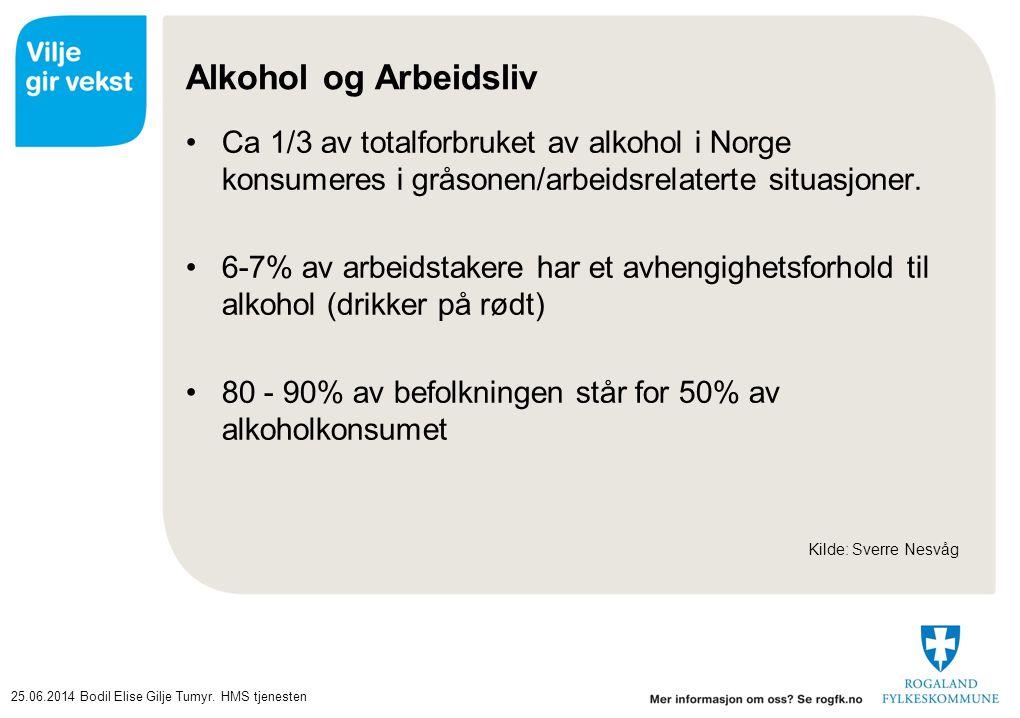 25.06.2014Bodil Elise Gilje Tumyr. HMS tjenesten Alkohol og Arbeidsliv •Ca 1/3 av totalforbruket av alkohol i Norge konsumeres i gråsonen/arbeidsrelat