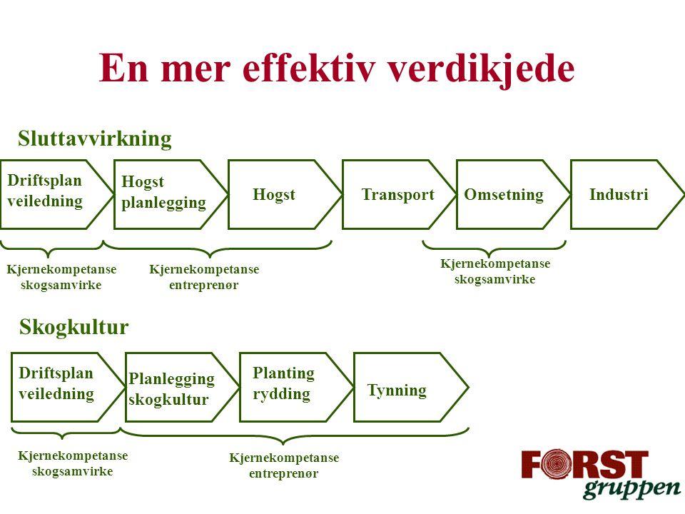 En mer effektiv verdikjede Hogst planlegging HogstTransportOmsetningIndustri Planlegging skogkultur Planting rydding Driftsplan veiledning Kjernekompe