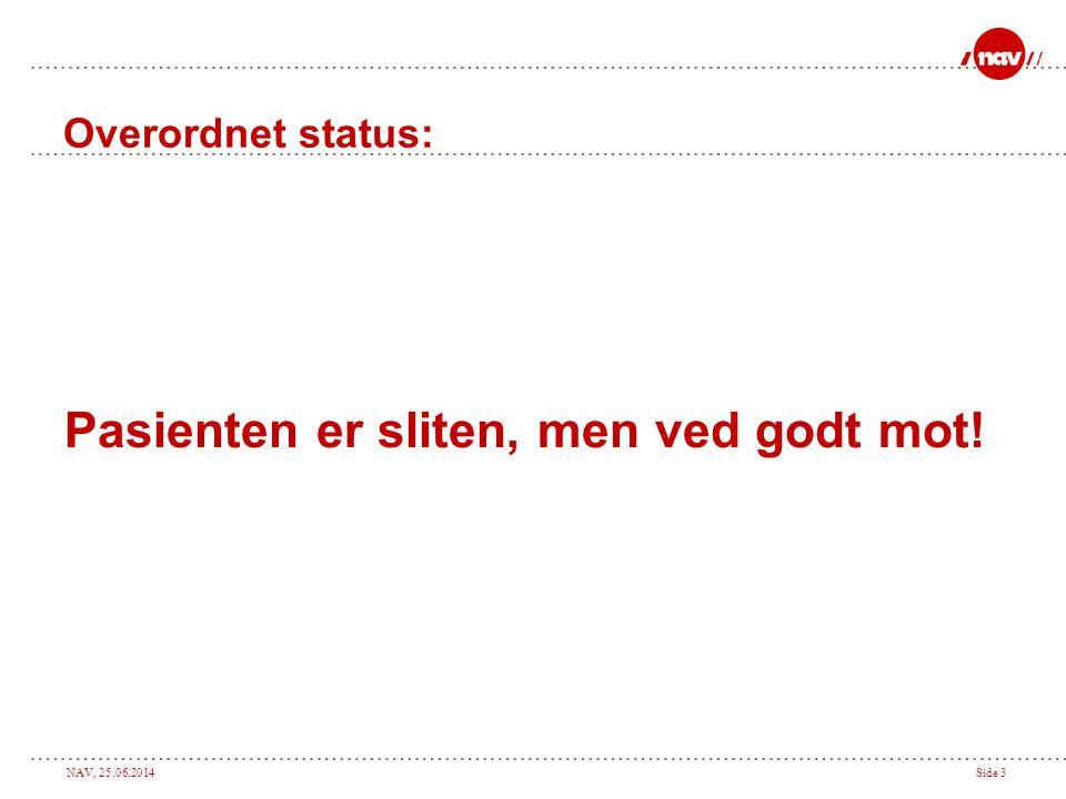 NAV, 25.06.2014Side 3 Overordnet status: Pasienten er sliten, men ved godt mot!
