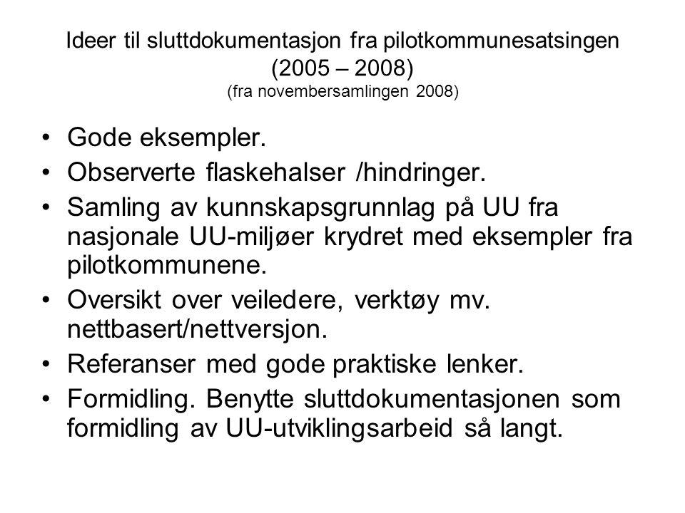 Ideer til sluttdokumentasjon fra pilotkommunesatsingen (2005 – 2008) (fra novembersamlingen 2008) •Gode eksempler. •Observerte flaskehalser /hindringe