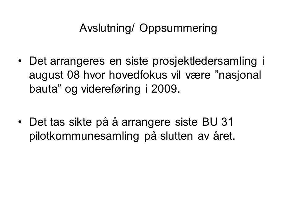 """Avslutning/ Oppsummering •Det arrangeres en siste prosjektledersamling i august 08 hvor hovedfokus vil være """"nasjonal bauta"""" og videreføring i 2009. •"""