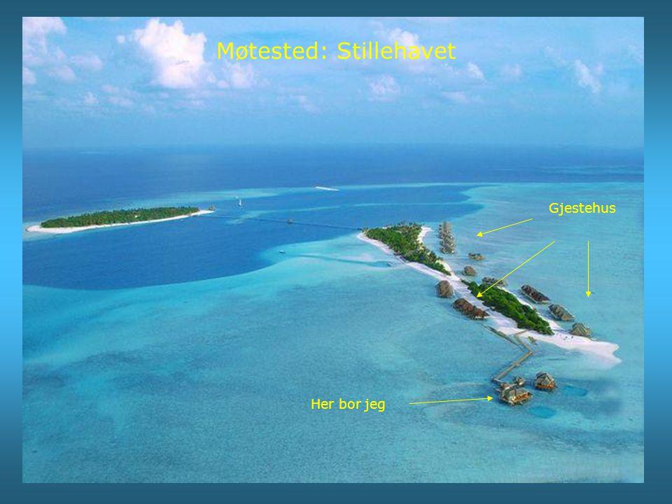 Møtested: Stillehavet Gjestehus Her bor jeg