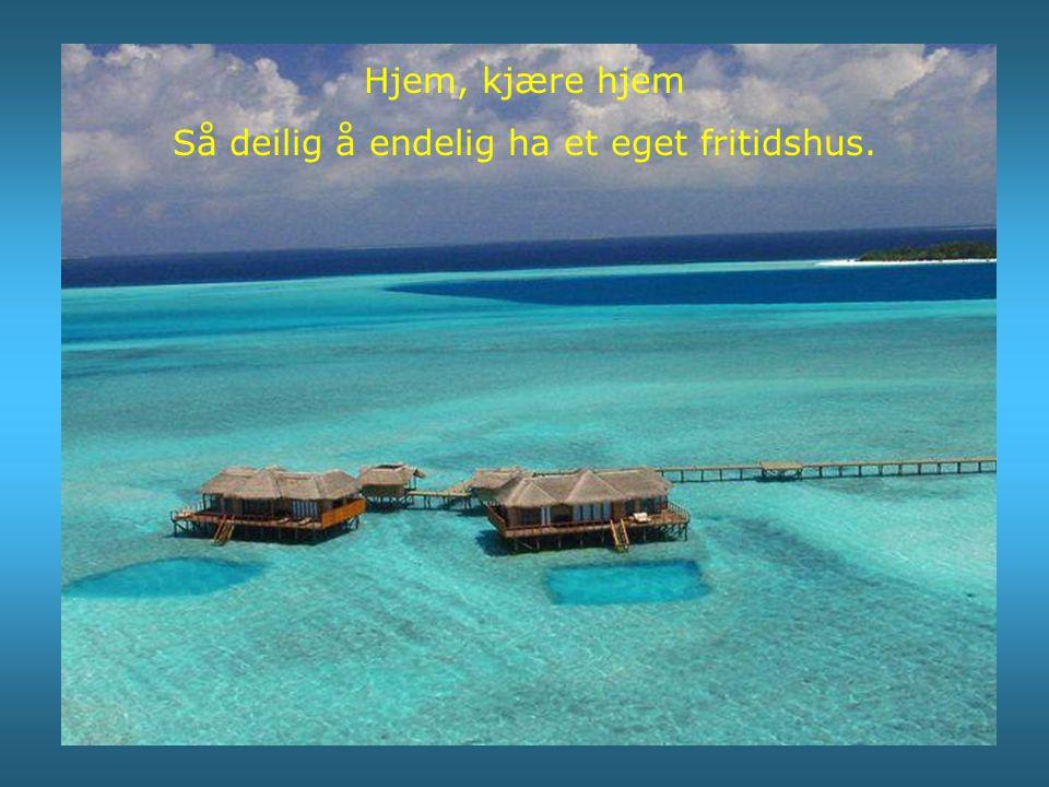 Her er øya vi skal ha festen på.