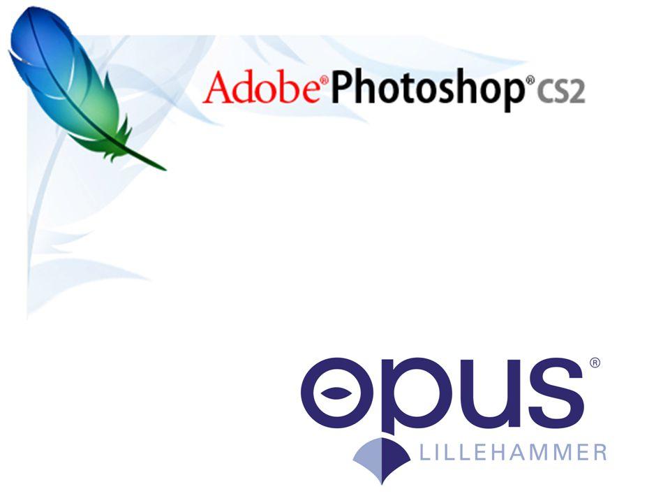 2 Pixel •En pixel en den minste bestanddelen i et bilde.
