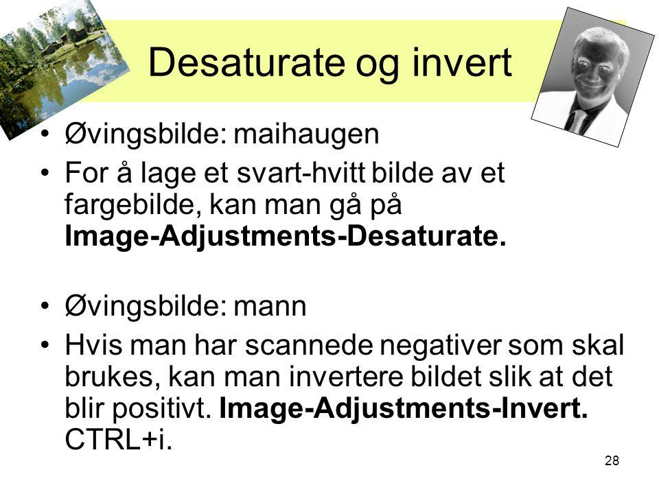 28 Desaturate og invert •Øvingsbilde: maihaugen •For å lage et svart-hvitt bilde av et fargebilde, kan man gå på Image-Adjustments-Desaturate. •Øvings