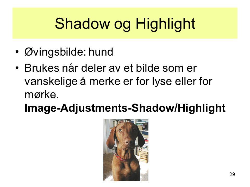 29 Shadow og Highlight •Øvingsbilde: hund •Brukes når deler av et bilde som er vanskelige å merke er for lyse eller for mørke. Image-Adjustments-Shado
