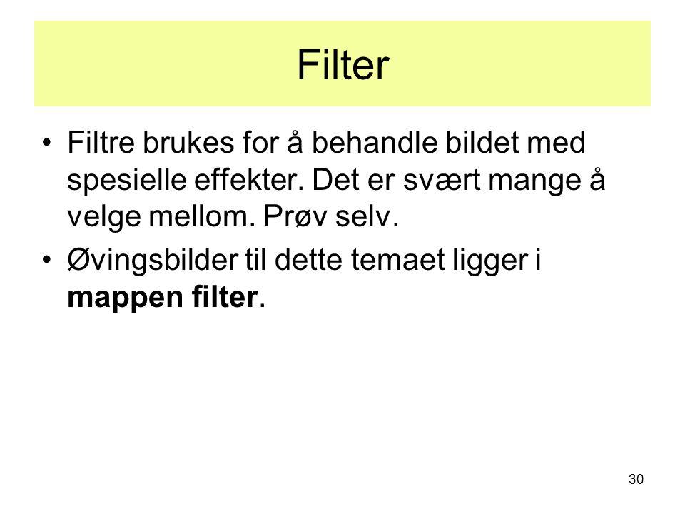 30 Filter •Filtre brukes for å behandle bildet med spesielle effekter.