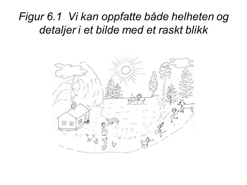 Figur 6.1 Vi kan oppfatte både helheten og detaljer i et bilde med et raskt blikk