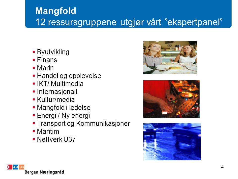 Mangfold 12 ressursgruppene utgjør vårt ekspertpanel  Byutvikling  Finans  Marin  Handel og opplevelse  IKT/ Multimedia  Internasjonalt  Kultur/media  Mangfold i ledelse  Energi / Ny energi  Transport og Kommunikasjoner  Maritim  Nettverk U37 4