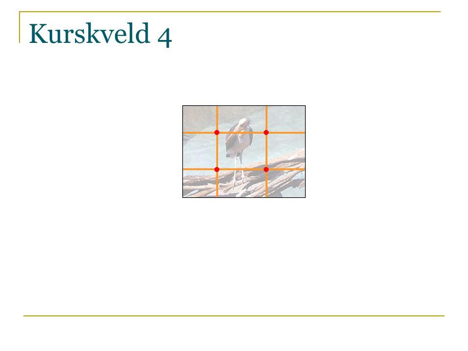 Komposisjon:  Det gyldne snitt  Det minst mulig bilde  Fine linjer, geometriske former, retninger…  Diverse