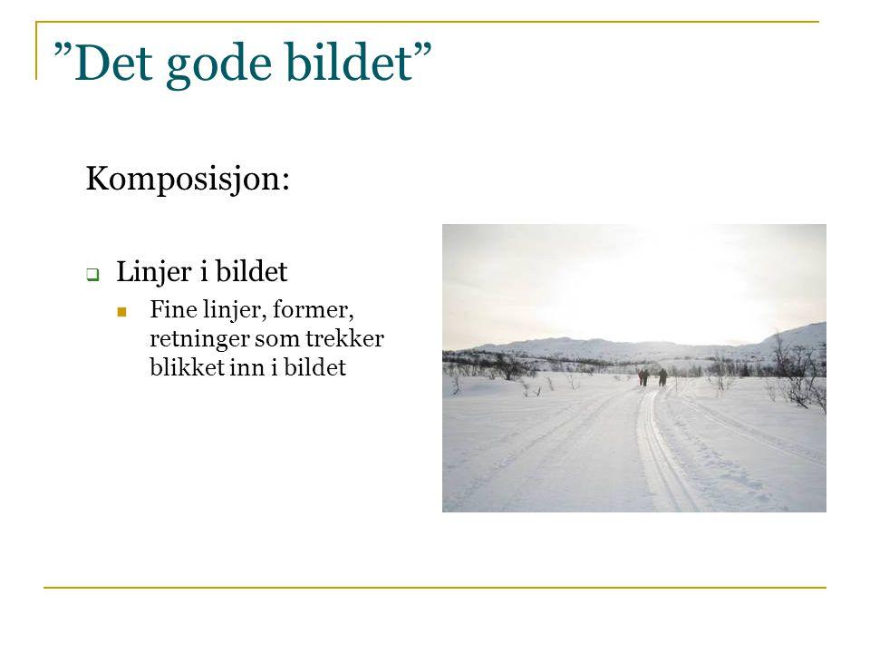 """""""Det gode bildet"""" Komposisjon:  Linjer i bildet  Fine linjer, former, retninger som trekker blikket inn i bildet"""