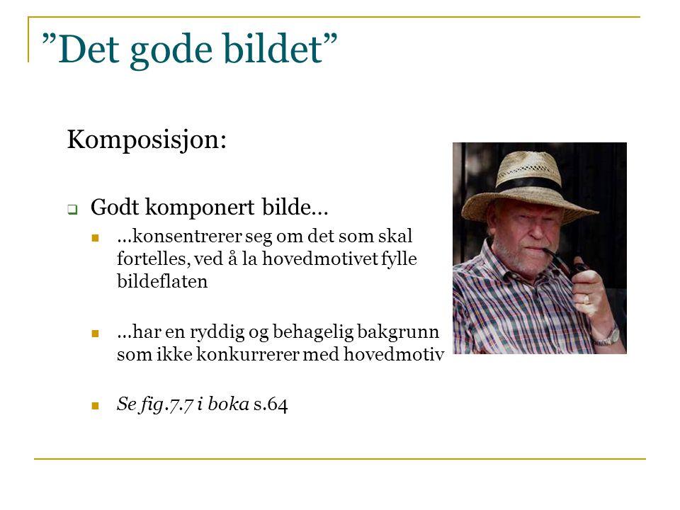 """""""Det gode bildet"""" Komposisjon:  Godt komponert bilde…  …konsentrerer seg om det som skal fortelles, ved å la hovedmotivet fylle bildeflaten  …har e"""