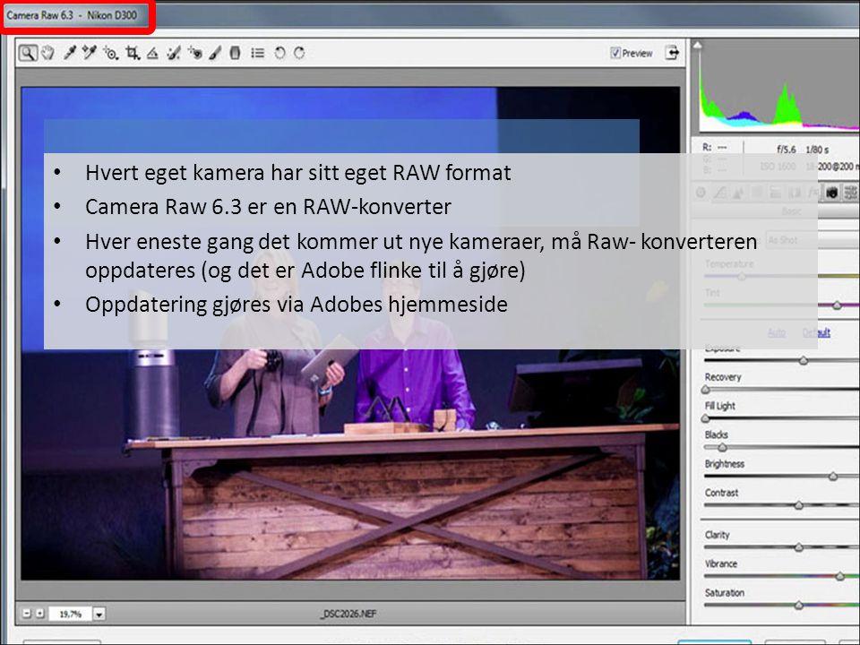 • Hvert eget kamera har sitt eget RAW format • Camera Raw 6.3 er en RAW-konverter • Hver eneste gang det kommer ut nye kameraer, må Raw- konverteren o