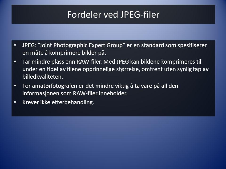 """Fordeler ved JPEG-filer • JPEG: """"Joint Photographic Expert Group"""" er en standard som spesifiserer en måte å komprimere bilder på. • Tar mindre plass e"""