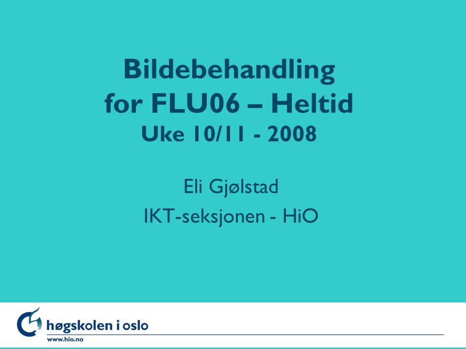Høgskolen i Oslo Bildebehandling for FLU06 – Heltid Uke 10/11 - 2008 Eli Gjølstad IKT-seksjonen - HiO