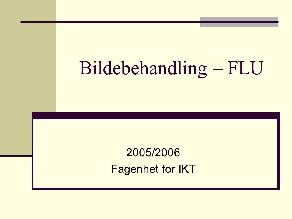 Bildebehandling – FLU 2005/2006 Fagenhet for IKT