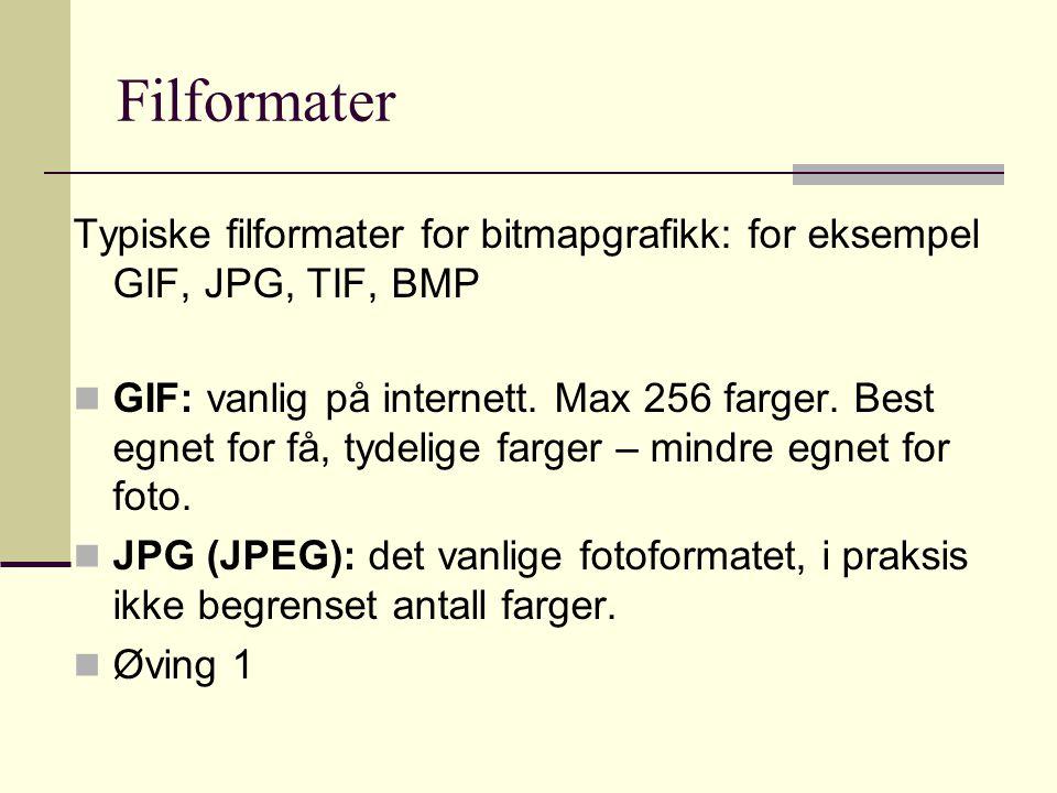 Filformater Typiske filformater for bitmapgrafikk: for eksempel GIF, JPG, TIF, BMP  GIF: vanlig på internett.