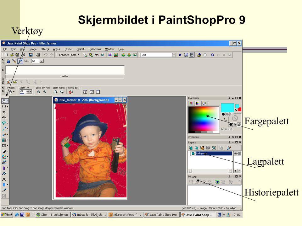 Bildebehandling i PaintShopPro Under Image-menyen :  Rotate = snu bildet  Flip = opp ned  Add border = en hvit kant rundt bildet  Picture frame = en farvet ramme rundt bildet  Resize = endre størrelse – ikke beskjæring  Greyscale – gi et bilde gråtoner
