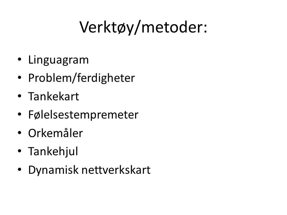 Verktøy/metoder: • Linguagram • Problem/ferdigheter • Tankekart • Følelsestempremeter • Orkemåler • Tankehjul • Dynamisk nettverkskart